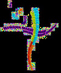 Jahr der Kirchenmusik